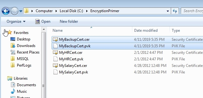 certificate in the file system