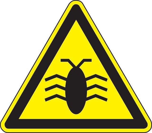 Bug on yellow warning sign image