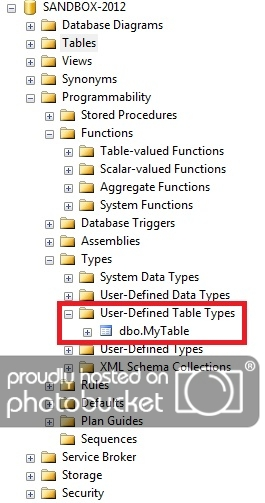 The SQL TABLE Type: Beyond Table-Valued Parameters